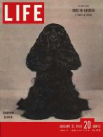 Life Magazine, January 31, 1949 - Dogs
