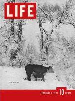 Life Magazine, February 8, 1937 - Wyoming Winter