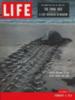 Life Magazine, February 8, 1954 - Turtle on beach, coral reef