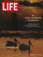 Life Magazine, February 28, 1969 - Herons