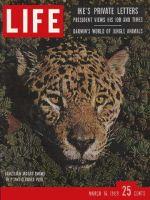 Life Magazine, March 16, 1959 - Leopard