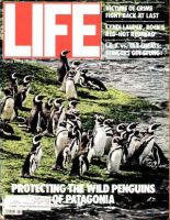 Life Magazine, April 1, 1984 - Penguins