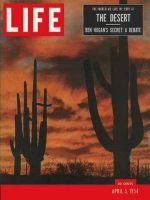 Life Magazine, April 5, 1954 - The desert