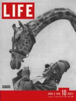 Life Magazine, April 8, 1946 - Circus clown with giraffe