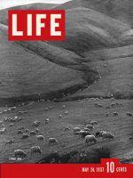 Life Magazine, May 24, 1937 - Spring Lambs
