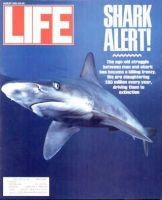 Life Magazine, August 1, 1991 - Sharks