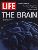 Life Magazine, October 1, 1971 - Human brain