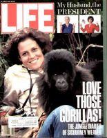 Life Magazine, October 1, 1988 - Sigourney Weaver With Gorilla