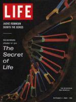 Life Magazine, October 4, 1963 - DNA molecule