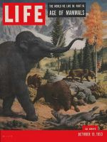 Life Magazine, October 19, 1953 - Age of mammals