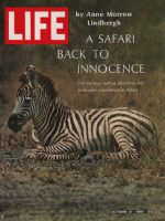 Life Magazine, October 21, 1966 - Zebra