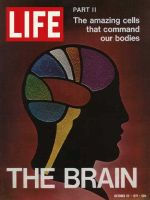 Life Magazine, October 22, 1971 - The Brain