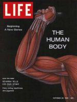 Life Magazine, October 26, 1962 - Marvel of motion, The human body