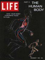 Life Magazine, December 7, 1962 - Digestion, The Human Body