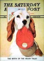 Saturday Evening Post, October 29, 1938 - Hunting Dog and Cap