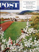 Saturday Evening Post, May 7, 1955 - Spring Robin