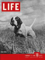 Life Magazine, February 25, 1946 - Best bird dogs
