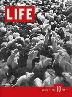 Life Magazine, March 1, 1937 - Laboratory Mice