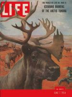 Life Magazine, June 7, 1954 - Arctic barrens