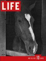 Life Magazine, July 26, 1937 - Polo Horse