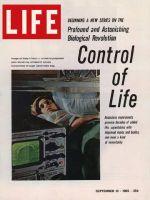 Life Magazine, September 10, 1965 - Expectant mother