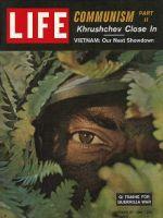 Life Magazine, October 27, 1961 - Advisers in Vietnam, mans eye