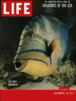 Life Magazine, November 30, 1953 - Sea creatures